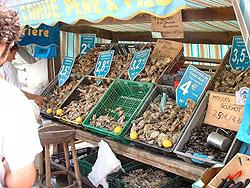 Austernmarkt Bretagne